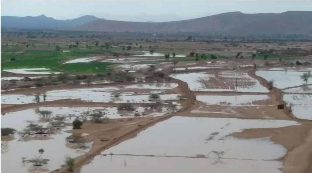 الشوافي يحذر المواطنين من أمطار غزيرة خلال الاسبوع القادم